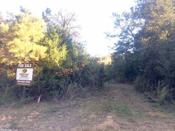 17430 Forest Service Rd. 18, Havana, AR 72842 Photo 2