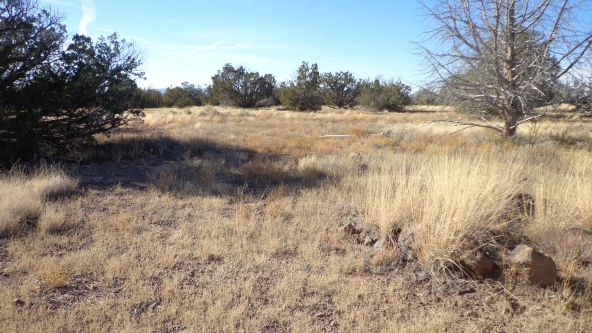 211 Juniperwood Rnch Un 3 Lot 211, Ash Fork, AZ 86320 Photo 2
