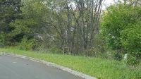 Home for sale: River Pointe, Kodak, TN 37764