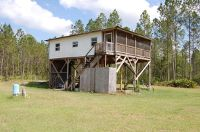 Home for sale: 280 Volusian Forest Trail, Pierson, FL 32180