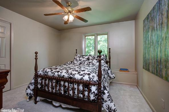 8 The Lake, Perryville, AR 72126 Photo 47