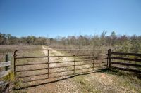Home for sale: Tbd County Rd. 89, Black, AL 36314