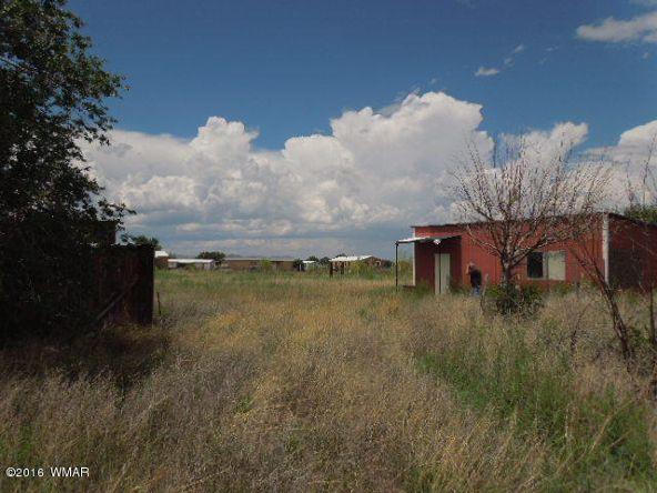 431 S. Tumbling T Dr., Springerville, AZ 85938 Photo 3