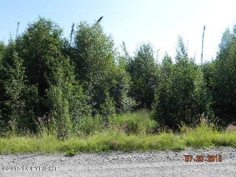 304 S. Ashley Rd., Big Lake, AK 99652 Photo 1