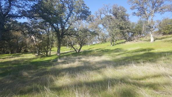 Basin Hollow, Millville, CA 96062 Photo 13