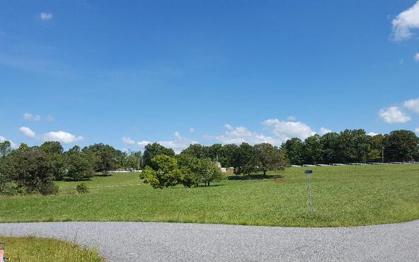 Lot27 Jewell Mason, Blairsville, GA 30512 Photo 14