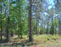 Home for sale: Lot 12 Watermark, Hortense, GA 31543