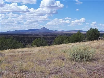 204 Juniperwood Rnch Un 3 Lot 204, Ash Fork, AZ 86320 Photo 1