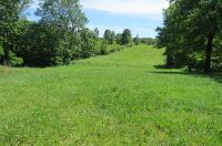 Home for sale: Lot 25 Valley Woods Rd., Spokane, MO 65754