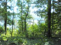 Home for sale: Bluebird Ridge Rd., Byrdstown, TN 38549