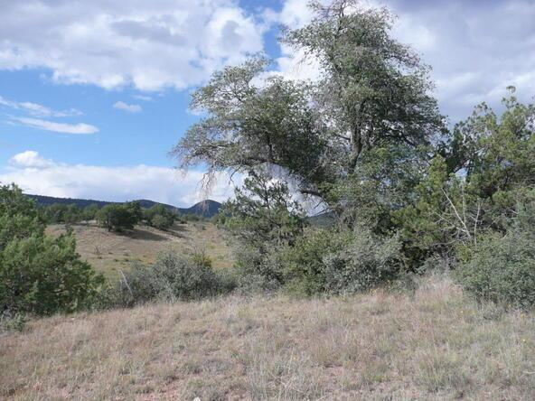 290 N. Navajo Trail, Young, AZ 85554 Photo 9