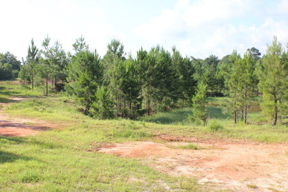 19815 County Rd. 12, Foley, AL 36535 Photo 8