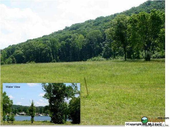 111 Lake Creek Dr., Guntersville, AL 35976 Photo 2