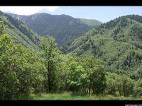 Home for sale: 1330 S. Eagle Nest Dr., Woodland Hills, UT 84653