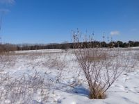 Home for sale: Lot 01 Rolling Meadows Dr., Amherst, WI 54406