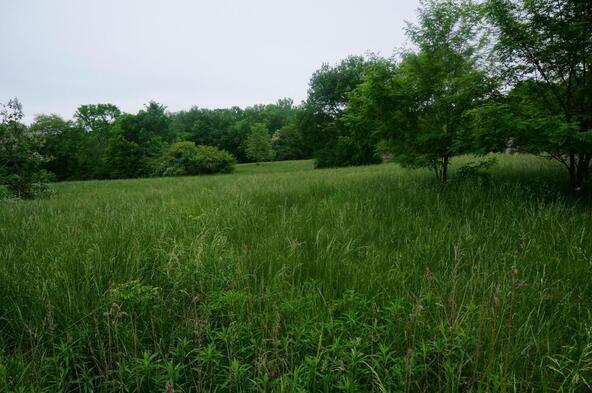 828 County Rd. 194, Bryant, AL 35958 Photo 14