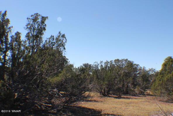 2 Acres Off Of Acr N. 3114, Vernon, AZ 85940 Photo 4
