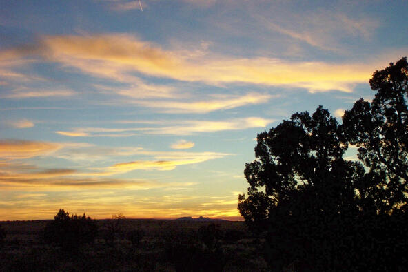 6218 S. Prairie Grass Ln., Williams, AZ 86046 Photo 19