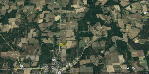 3 Acres Hwy. 103, Slocomb, AL 36375 Photo 10