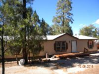 Home for sale: 1698 North Dr., Lakeside, AZ 85929