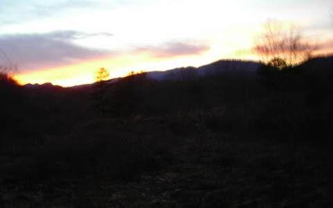 Echo Valley Rd., Morganton, GA 30560 Photo 5