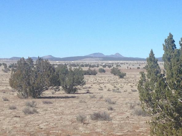 24 Off Of Antelope Run, Ash Fork, AZ 86320 Photo 7