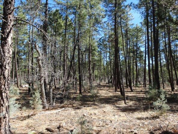 1090 W. Sadler Ln., Lakeside, AZ 85929 Photo 16