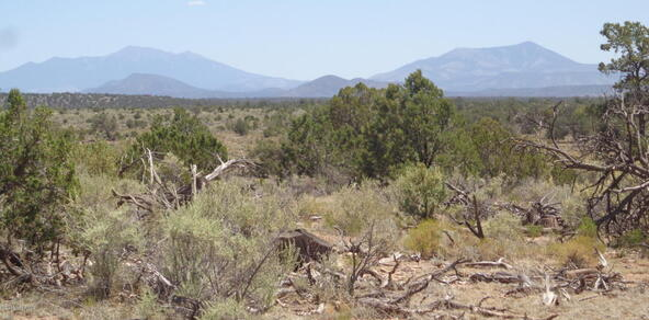4768 South Rim Ranch Rd., Williams, AZ 86046 Photo 20