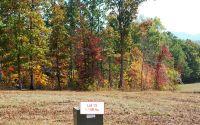 Home for sale: Lt13 Jack Groves Ln., Hayesville, NC 28904