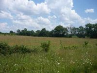 Home for sale: Lot 17 N. Hwy. 13, Clinton, MO 64735