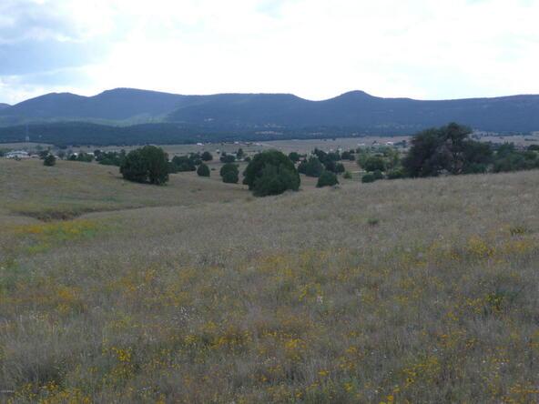 290 N. Navajo Trail, Young, AZ 85554 Photo 17