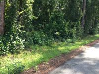 Home for sale: Moon Lake 1.5 Acres, New Port Richey, FL 34654