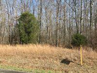 Home for sale: 0 Crow Cut Rd., Fairview, TN 37062