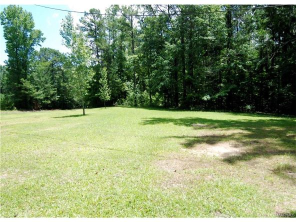1923 Central Rd., Eclectic, AL 36024 Photo 5