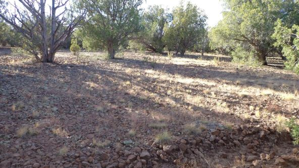 44201 N. Crazy Coyote Way, Seligman, AZ 86337 Photo 34