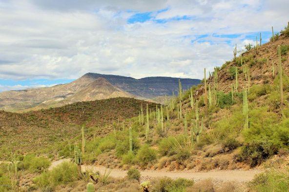 44000 N. Cottonwood Canyon Rd., Cave Creek, AZ 85331 Photo 59