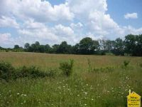 Home for sale: Lot #19 N. Hwy. 13, Clinton, MO 64735