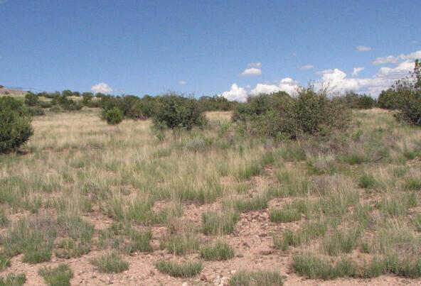 206e Bixler Trail, Ash Fork, AZ 86320 Photo 5