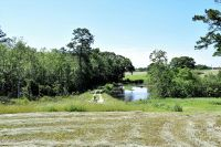 Home for sale: 76 +/- Ac Ms-63, Lucedale, MS 39452