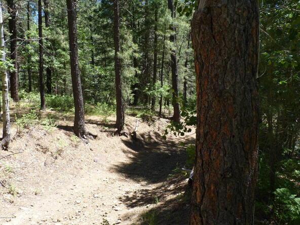 24xx-E. Walker Rd., Prescott, AZ 86303 Photo 40