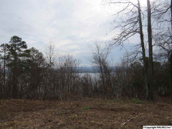 3151 Preston Island Cir., Scottsboro, AL 35769 Photo 3