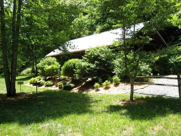 Lot 21 Toccoa Preserve, Blue Ridge, GA 30513 Photo 6