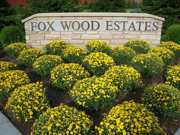 1121 Fox Wood Ln., Downers Grove, IL 60516 Photo 3