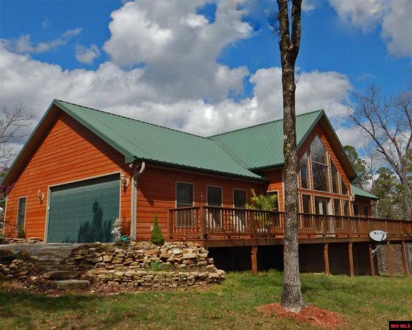 175 Indian Hollow Rd., Calico Rock, AR 72519 Photo 2
