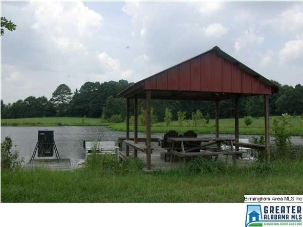 220 G B Sanders Dr., Ashville, AL 35953 Photo 38