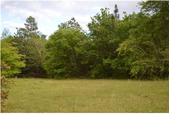 13900 Boothtown Rd., Citronelle, AL 36522 Photo 10