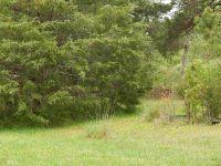Home for sale: 2255 N.W. Pea Ridge, Cornelia, GA 30531