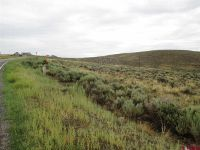 Home for sale: Tbd 1 County Rd. 17, Gunnison, CO 81230