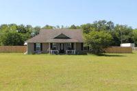 Home for sale: 31 Lantis Ln., Naylor, GA 31641