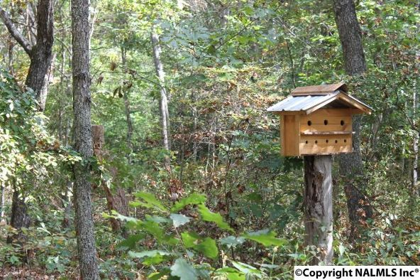 493 Cove Rd., Mentone, AL 35984 Photo 42